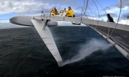 L'Hydroptère », l'oiseau des mers…