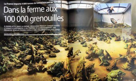 """DANS LA FERME AUX 100000 GRENOUILLES. Magazine """"ÇA M'INTÉRESSE"""" (4 pages) , Avril 2017."""