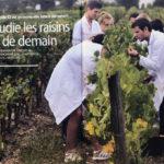 """""""Ici on étudie les raisins des vins de demain"""" – Ca m'intéresse – Septembre 2019 – 4 pages"""