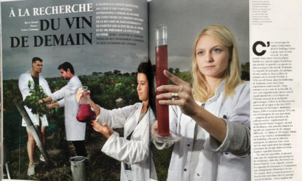 A la recherche du vin de demain – We Demain (6 pages) février 2019