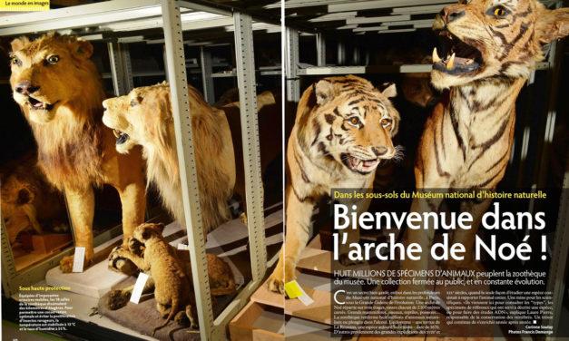 """Bienvenue dans l'arche de Noé – Magazine """"Ça m'interesse"""""""